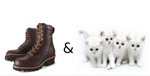 Cats, boots, cat videos, Just for cats, Internet Cat Video Festival, fun, beat box