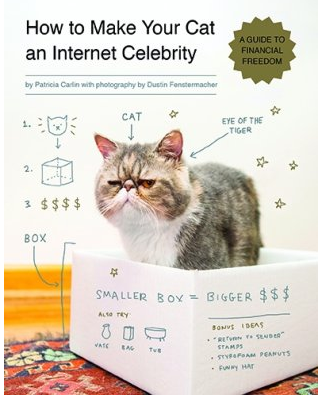 Book, cats, how to make cats, internet, star, celebrity