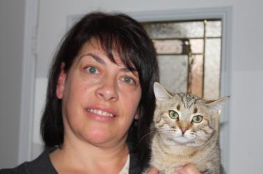 Cats, Toronto, Animal Services BluePaw Program, pet license
