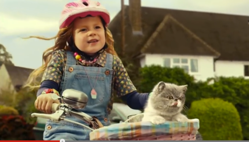 Cat Video, Sing It Kitty, UK. adverstising, cat commercial. UK