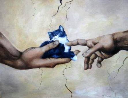cats,  classical art, sisteen chapel, leonardo davinci