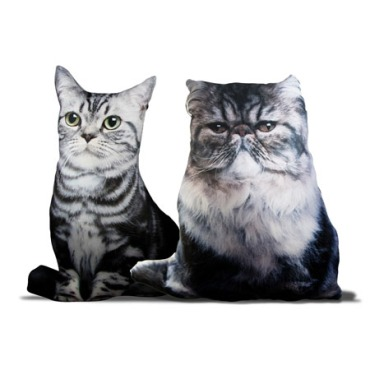 Cats, Persian, Silver Tabby, American Shorthair, British shorthair, Silver tabby, Pillows, home decor