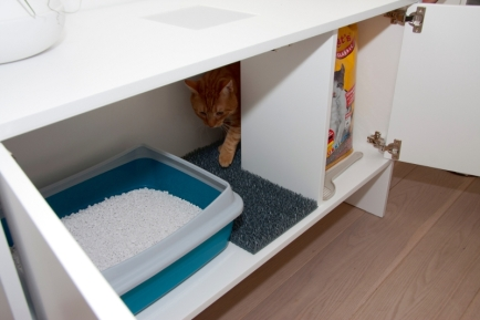 Cats, litter, cabinet, Urab Cat Desing, home furntiure