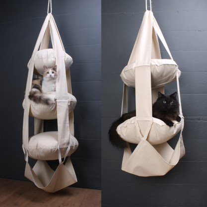 Cat's Trapeze, Haus Panther