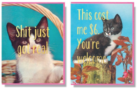cats, Kittens, Smitten Kitten, theme cards, Toronto based Design, local, fun