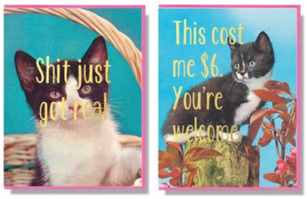 cats, Kittens, Smitten Kitten, theme cards, Toronto based Design, local, fun