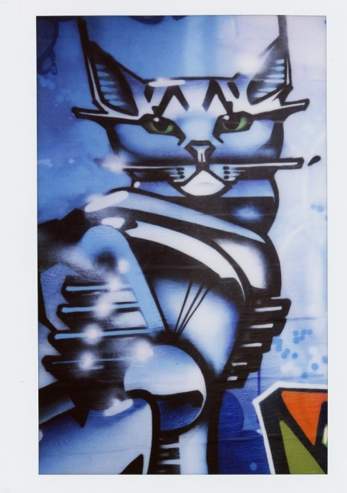 Cats, Graffiti, Art, Felines in Art, Moder Art, Street Art,