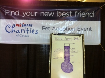 Toronto, PetSmart Charities Canada, Toronto's Mega Pet Adoption Event, CNE