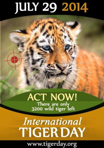International TIger Day, Tigers, Global TIger Day, July 29 2014, Extinct, China, Tiger skins, Tiger bones, Tiger Trade, Tiger Time, Extinction, Endangered