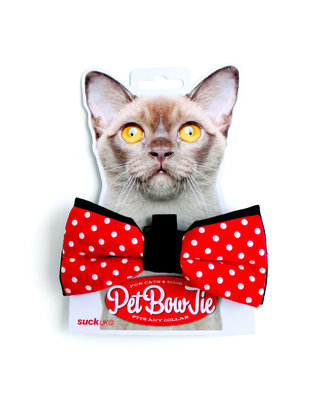 Cats, pet bowtie, Suck UK, cat fashion, Rolo Store
