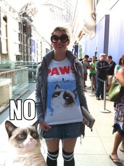 Grumpy Cat, Tardar Sauce, Famous Internet Cats, Cats, Internet Meme, Toronto, Eaton Center, Indigo book store, Grumpy Guide to Life