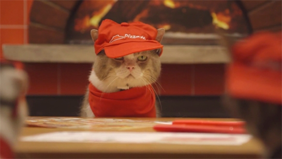 Cats, Pizza Hut, Pizza Hut Japan, Cats, Video, Pizza Cats, commercial, employees
