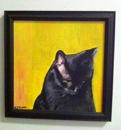 cats, black cats, National black cat appreciation day, little planthers, adopt, rescue, graceful