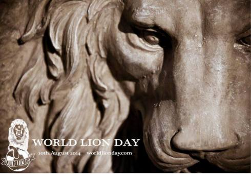 Lions, World Lion Day,Global March For Lions, Endangered, Extinction, Big Cats, Africa, South Africa, Canned Hunting, Trophy Hunting, Ban imports of Lion Trophies, USFWS, conservation, poaching,habitat loss, climate change