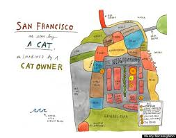 cats, Lost Cat A story of love desperation and GPS Technolgy, Books, Caroline Paul, Missing Cats, Outside cats, Book review, vacation reading, San Francisco