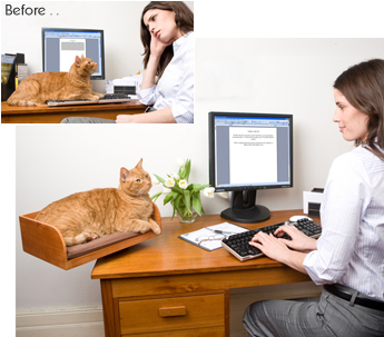 catss, kittens, desks, work staition, home office, cat perch, cat bed, The Refined Feline