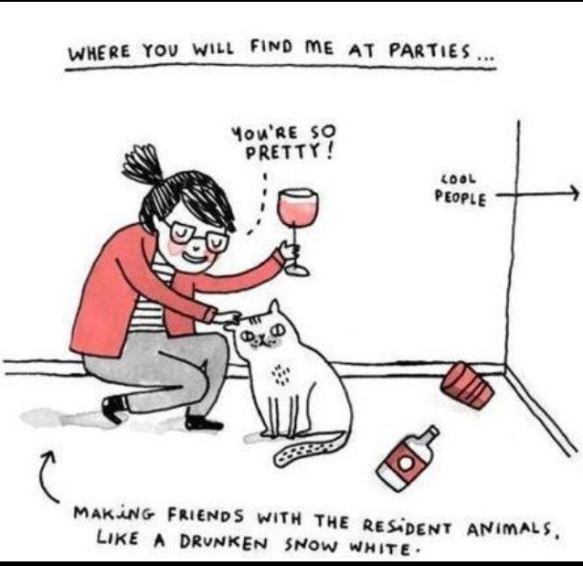 drink with cats cartoon