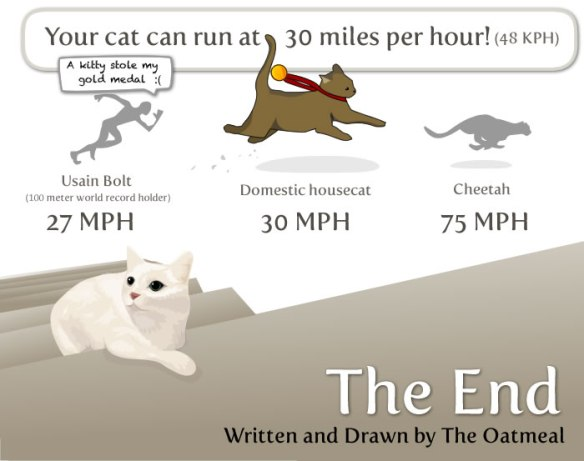 Info graphic, 17 Things worth knowing about your cat, Cats, Cat paws, Things to know about Cats, History of the cat, cat lovers, cats in ancient Egypt, Isaac Newton, Cat flap, Cats see better in the dark, Abraham Lincoln, Cats Purr frequency, Cats can hear ultrasonic sounds, Cats whiskers, Why cats need Taurine, Nikola Tesla, cats can run fast, Cheetahs, domestic cats, The Oatmeal comics, cat cartoons,