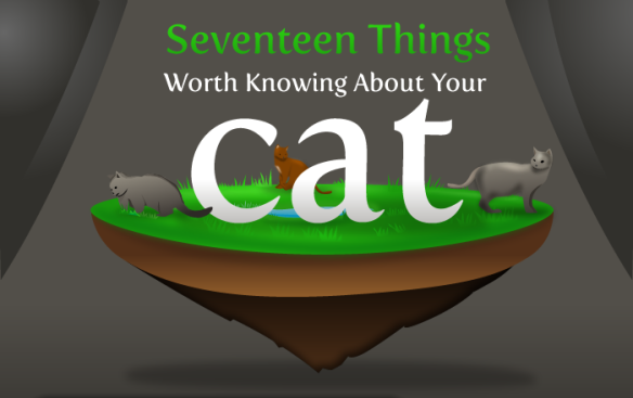 Info graphic, Cats, Things to know about Cats, History of the cat, cat lovers, cats in ancient Egypt, Isaac Newton, Cat flap, Cats see better in the dark, Abraham Lincoln, Cats Purr frequency, Cats can hear ultrasonic sounds, Cats whiskers, Why cats need Taurine, Nikola Tesla, cats can run fast, Cheetahs, domestic cats, The Oatmeal comics, cat cartoons,