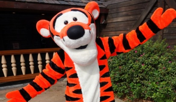 Walt Disney World, Disney World, Florida, Tigers, Baby Tigers, Baby Bengal Tiger, Bengal Tiger cub, private ownership of big  cats, Tigers are not pets, Ban private ownership of big cats, USA, Big Cat Rescue, illegal wildlife trade, Women denied entry into disney world for trying to bring in baby bengal tiger