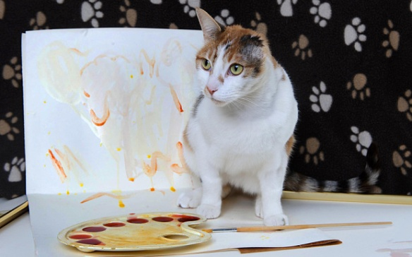 Cats, Rescue Cats, Cats with one Ear, Van Gogh, Van Gogh the cat, Cat that Paints, post-impressionist cat,  Mayhew Animal Home, London, UK, Rescue Cats UK, Adopt cats, Adopt cats in the UK, Special Needs cat