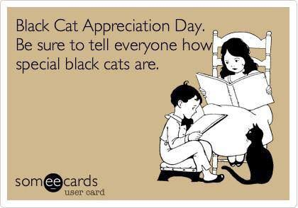 Black Cat Appreciation Day, Black Cats, black cats are awesome, love black cats, meow monday, black cats are good luck, respect black cats, black cat awareness day, adopt black cats, don't overlook black cats when adopting, house panthers, mini panthers