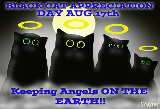 Black Cat Appreciation Day, Black Cats, black cats are awesome, love black cats, meow monday, black cats are good luck, respect black cats, black cat awareness day, adopt black cats, don't overlook black cats when adopting, house panthers, mini panthers, I love black cats