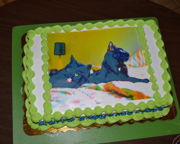 black cats, cat rescue, Cats in Toronto, Adopt dont Shop, Caturday, Cats Are Family, Little Lions, Cats of the Internet, Lets Talk About Your Cat, Purr and Roar, Caturday, Black cats are awesome, Toronto Cats, Adopt black cats, Cats as teachers, cats birthday, birthday cake