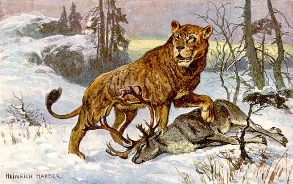 Cave Lions, Extinct Lions, Siberia, Russia, academy of Sciences of Yakutia, Pleistocene animals, big cats, Panthera spelaea (Goldfuss), Fossils, lion cubs, Prehistoric big cats, Scientific discovery
