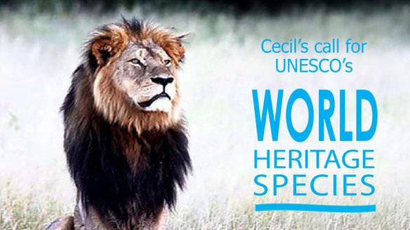 "Join Cecil the Lion in his call to UN/UNESCO to establish ""World Heritage Species"" program, Save Lions, Ban Trophy Hunting, Ban Canned Hunting, Save big cats, save wildlife, Africa, Zimbabwe, Cecil, Cecil the Lion, Compassionate conservation, be the change, UNESCO, Petition"