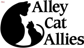 Alley cat Allies, charities, Cat Charities, Christmas donations, giving back, helping cats,