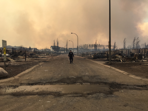 Alberta, Fort McMurray, Wildfires, Pet rescue, climate change, cat rescue, animal rescue, Canada, Natural disasters, Fort McMurray Animal Rescue, cats, dogs, Fort McMurray Fire Emergency Animal Assistance