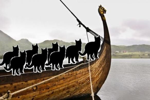 cats, Vikings, Norwegian Forest Cats Maine Coon, Cats, Caturday, History of the domestic cat, Cat breeds, Cat breeds from Overseas, Cats from Norway
