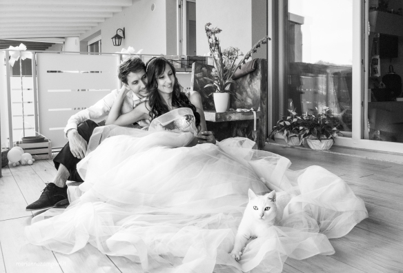 Marianna Zampieri, Photography, Italy, Weddings, Cat Photography, Brides and Cats,