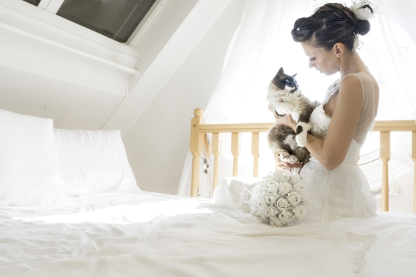 Marianna Zampieri, Photography, Italy, Weddings, Cat Photography, Brides and Cats, Cats in Venice, Photography