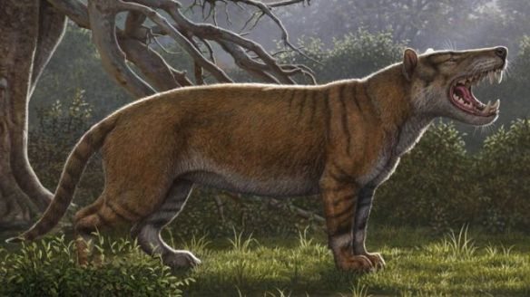 Kenya, Fossil, Giant Lion, New discovery, Prehistoric Cats