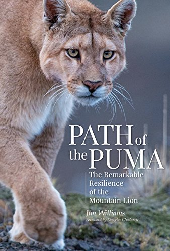 Path of the Puma, Book Review, Jim Williams, Puma, Mountain lions, Conservation, North America, South America